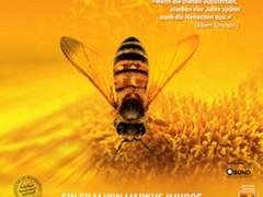 Bienchen summt nicht mehr